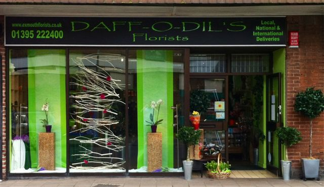 Daffodils Shop Window